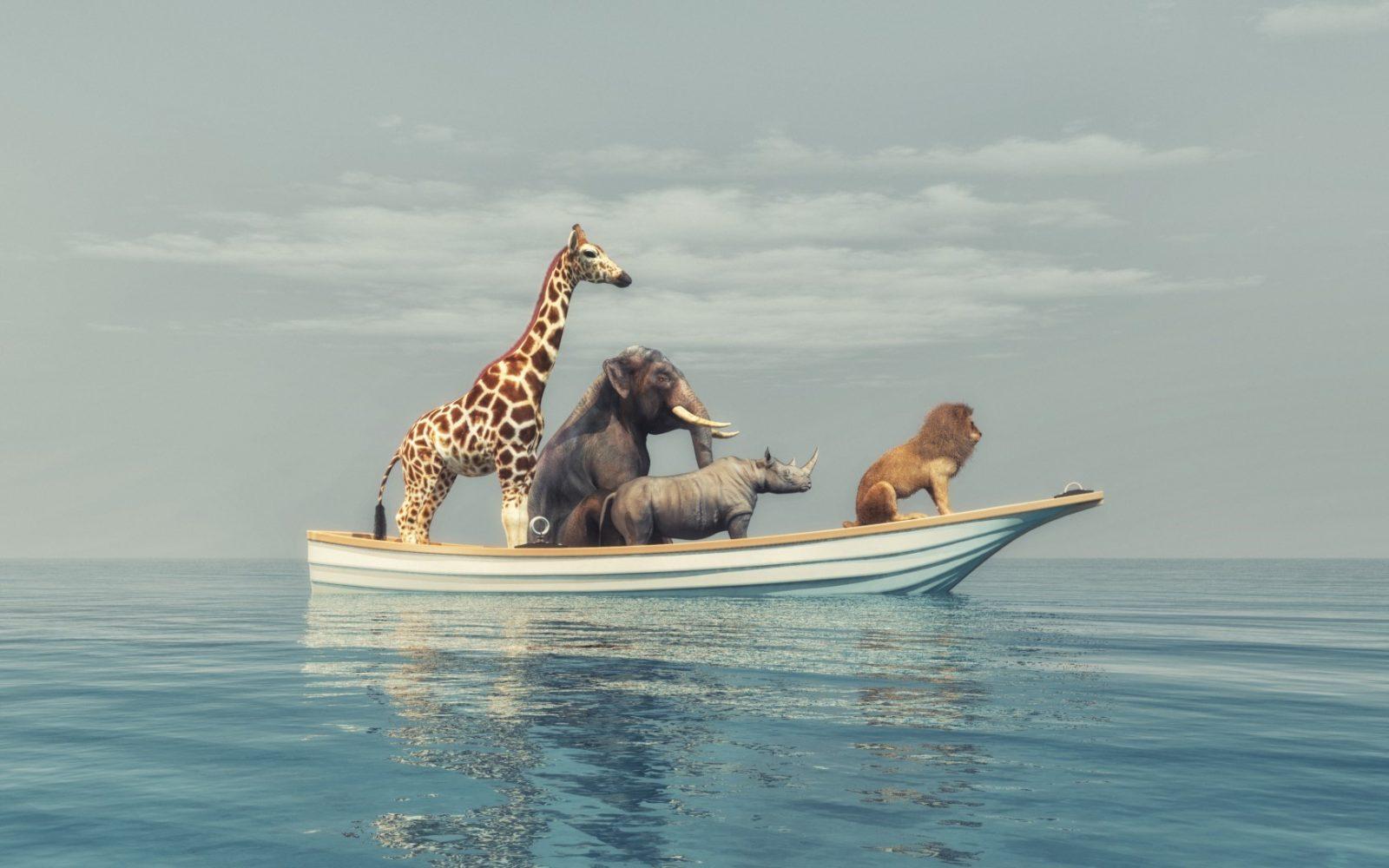 DLF - Digital Leaders Fund - Giraffe, Elefant, Nashorn und Löwe auf einem kleinen Boot auf dem Ozean