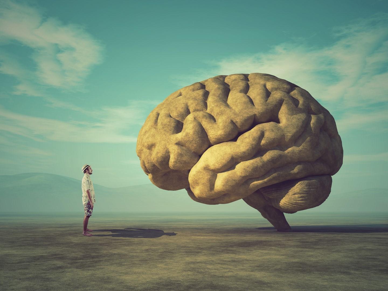 DLF - Digital Leaders Fund - Mann steht vor riesigem Gehirn in einer einfachen Landschaft