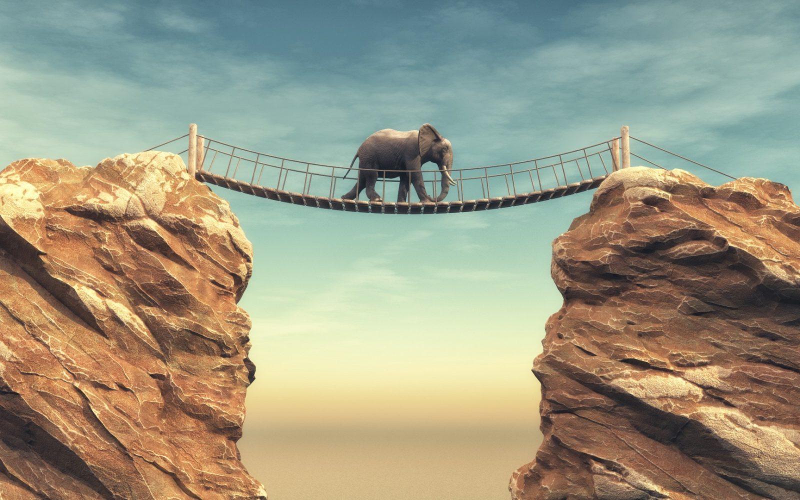 DLF - Digital Leaders Fund - Ein Elefant läuft auf einer Hängebrücke von einem Felsen zum Anderen