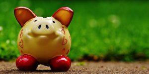 Ausgabeaufschlag sparen - Sparschwein auf einem Weg mit Wiese im Hintergrund