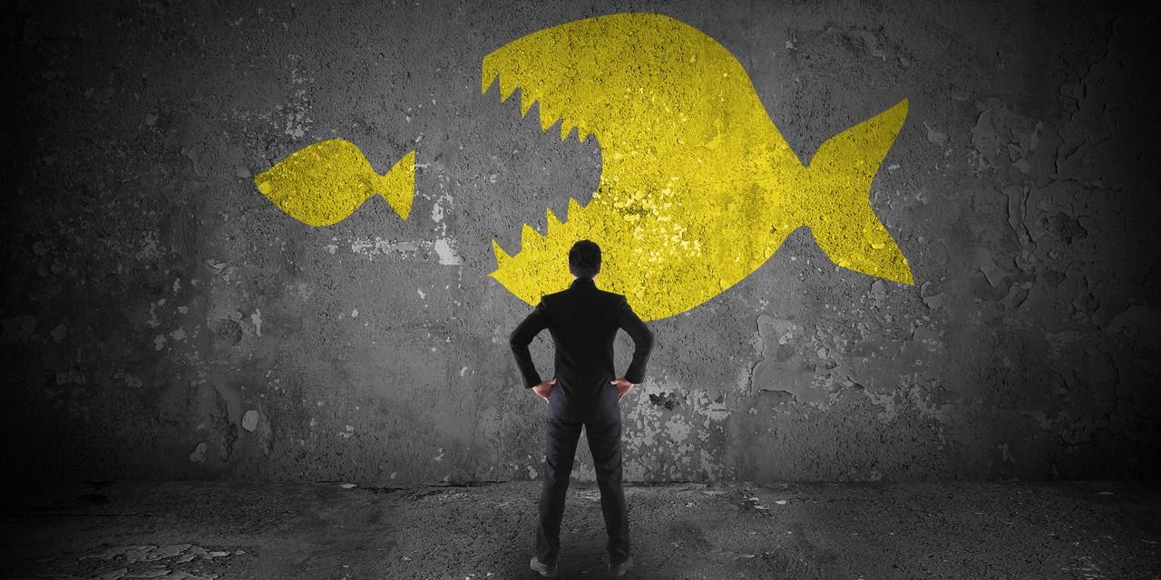Nutanix Aktie - Statt High-Growth nun Übernahmekandidat - Mann steht vor Wand mit zwei Fischen