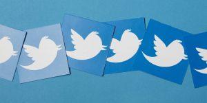 Twitter Aktie - Logo von Twitter auf blauem Hintergrund