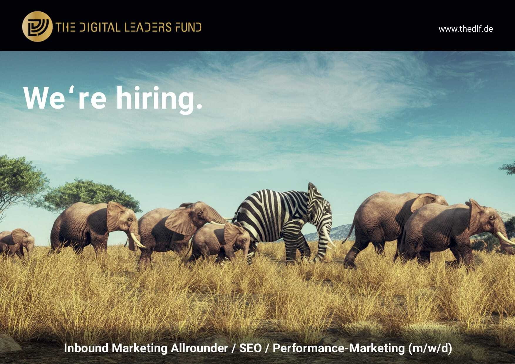 We're hiring: Inbound Marketing Allrounder