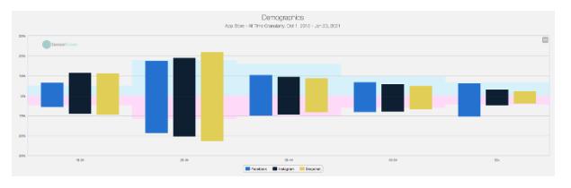 Facebook Aktie Demographie Chart