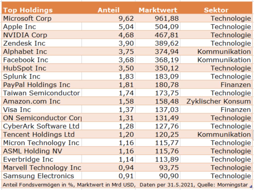Top Holdings Kategorie Technologiefonds