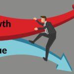 Growth vs Value Ansatz